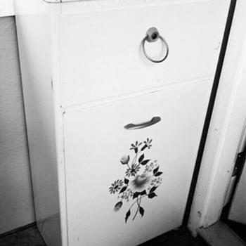 Trash bin or produce bin? - Kitchen