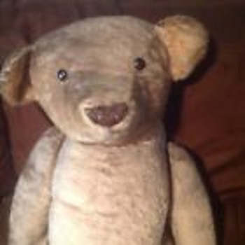 """Large Antique 1905-1920 36"""" Strunz? Bear"""