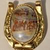 Victorian Brooch pin on a Horse shoe brooch