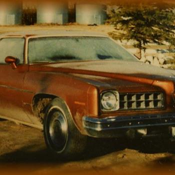 My First Car -- PONTIAC LeMANS SPORTS ( 2 door )