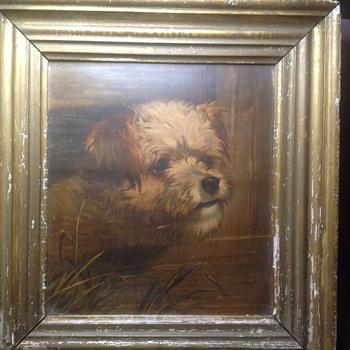 old dog - Fine Art