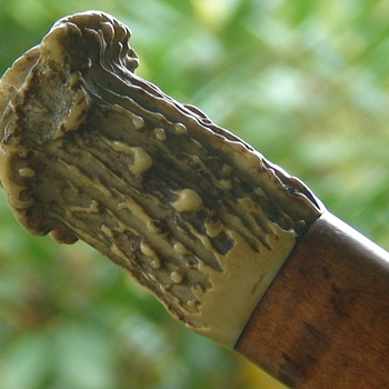 Tiger Maple and Antler Walking Stick - Accessories