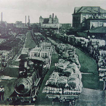 Cotton Scene at the Railyards in Houston, Texas. Pre-1907 - Postcards