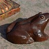 My brown frog.