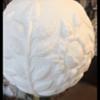 GWTW/hurricane lamp