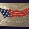 SAW Patriotic card case c. 1898