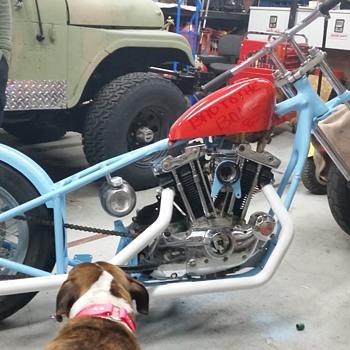 Barn find rebuilding ironhead Sportster. - Motorcycles