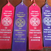 Early Sixties Penn State University 4-H Club Merit Ribbons