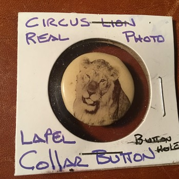 Circus Lion Real Photo Collar Lapel Stud - Advertising