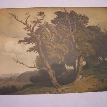 Old Print - Fine Art