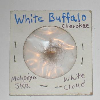 White Buffalo/Bison Hair - Animals