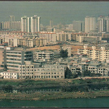1995 - Forum Hotel Shenzhen China Postcard - Postcards