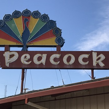 1950s  neon peacock sign  - Advertising