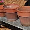 Large, Old Terracotta Flower Pots