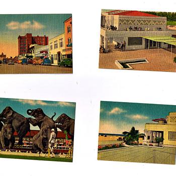 Retro Vintage Postcards From OLD SARASOTA, Ringling Musuem, Downtown,etc...