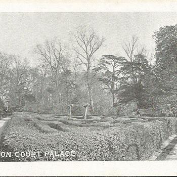 HAMPTON COURT PALACE - THE MAZE  - Postcards