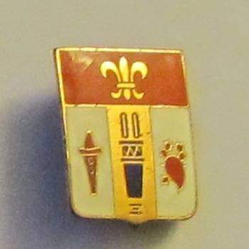 Possible Military Pin  - Military and Wartime
