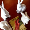 for jscott and other bunny collectors