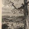 Harpers Pictorial Civil War