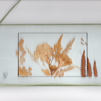 Pressed foliage and flowers between two glass panel, oustide string for decoration, signed by an artist or the maker.