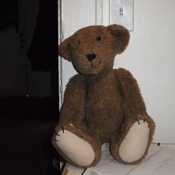 The mysterious Teddy