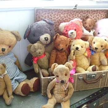 Just a Few of My Favorite Teddies in My Collection! - Dolls