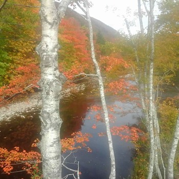 Fall Colours On The Cabot Trail - Photographs