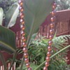 WMF Myra Krytall Glass Bead and Myra Ikora Glass Bead Necklaces