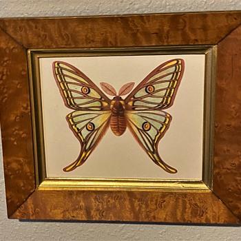 An old birdseye maple frame i found - Fine Art