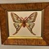 An old birdseye maple frame i found
