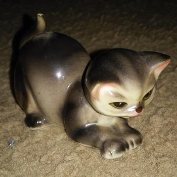 Gray, black, and white cat  - Animals