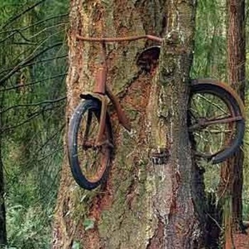Don't know where this is, but I know it's a Mike Bike ! - Photographs
