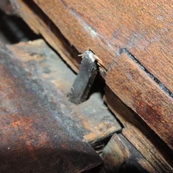 Cradle Part III - Furniture