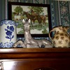 Late 1800's Buttermilk pitcher and 1930,s Cats Paw pitcher