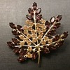 B David autumn leaf brooch