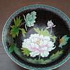My cloisonné bowl