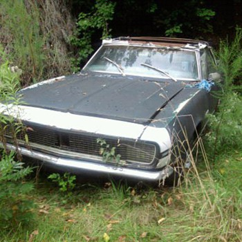 Abandoned cars in Delaware...Can you believe it?  No tresspassing signs too. - Classic Cars