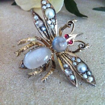 Super big winged insect victorian moonstones brooch.