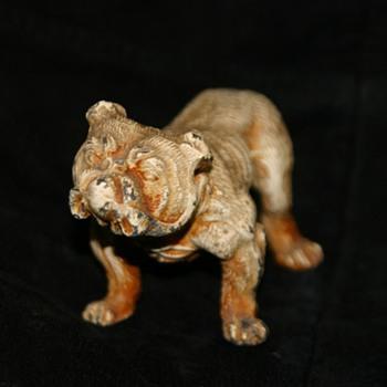 unkown bulldog