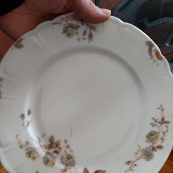 Inherited Haviland & CO set - China and Dinnerware