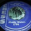 Mr. Muddy Waters...On 45 RPM Vinyl