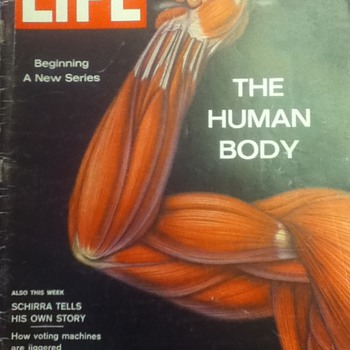 Life Magazine: The Human Body - Paper