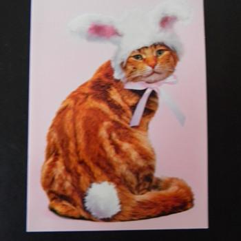 HAPPY EASTER CW...XO KITTY BUNNY - Animals