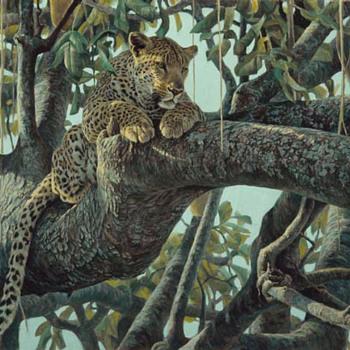 "Robert Bateman  -  ""LEOPARD IN A SAUSAGE TREE ""  -  Signed Artist Proof"