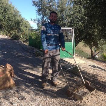 Antique Olive Gathering Machine - Tools and Hardware