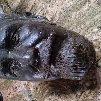 Wax human size head bust - Fine Art