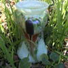 Art Nouveau Crocus glass vase by Kralik
