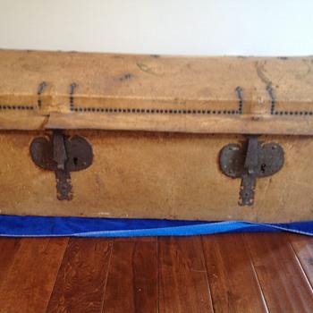 Hide-covered trunk - Furniture