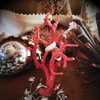 Coral on silver - Fine Jewelry