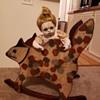 Cat rocking chair